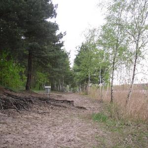 FKK- Strand mit Buschwerk auf der Wiese