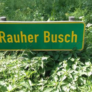 B 61  Waldparkplatz Rauher Busch