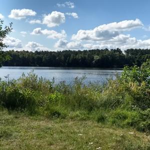 Am Wittbrietzener See
