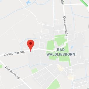 Bad waldlisborn